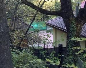 НИИ Сеченова по суду вернули корпус, в котором жил прокурор Ялты   1817