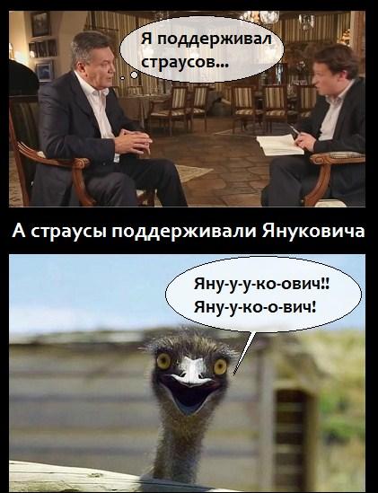 yanukovych_strausy_6