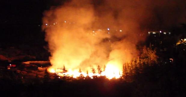 Пожар в Артеке. КрымФАН