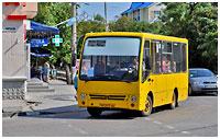 29-bus-0